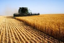 Agri-Business