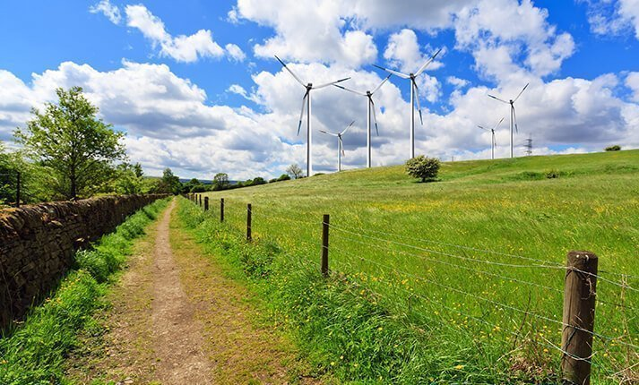 Field with wind turbines on the horizon