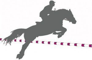 Equine Law - horse jumping