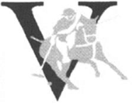 Roman numeral V overlaid with polo player
